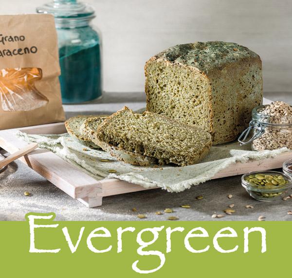 Farina Evergreen